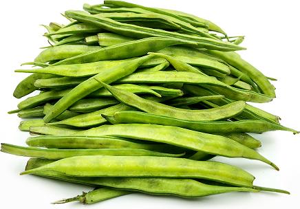 Guar Beans