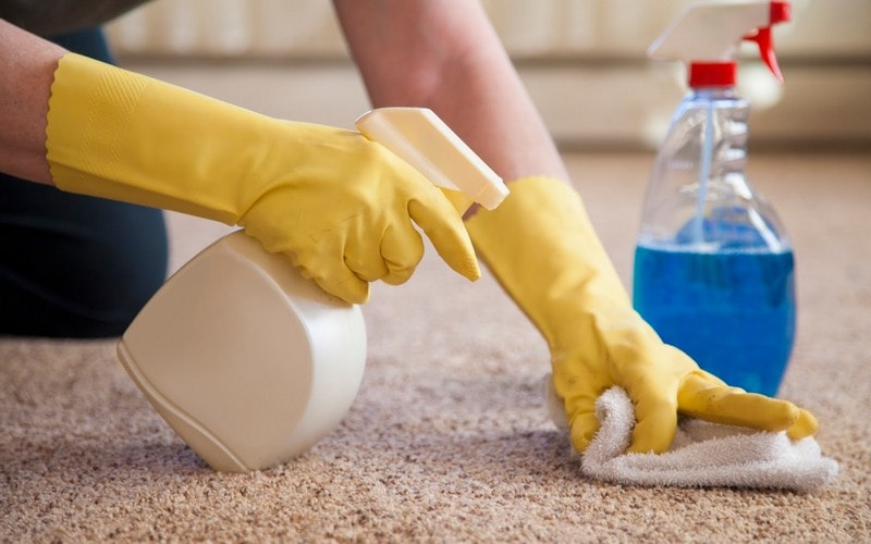 getting slime out of carpet